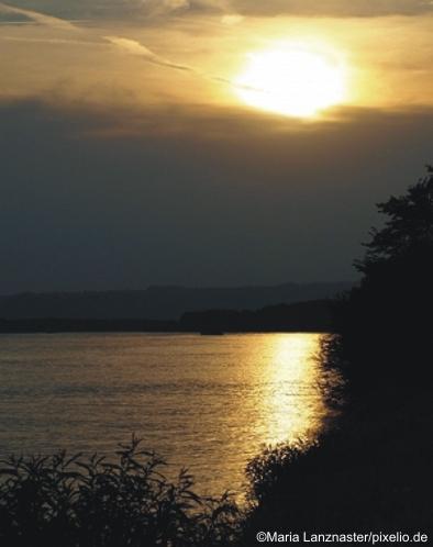 Donauimpressionen
